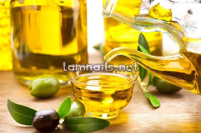 dưỡng tay bằng dầu oliu